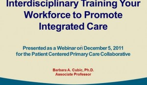 Interdisciplinary Training Your Workforce to Promote Integrated Care
